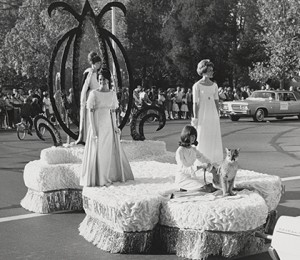 A live cougar joins the 1965 Homecoming royalty in the parade. Students in the '60s spent days decorating floats and dorms.