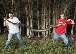 Pythons have become an invasive species in the FLorida Everglades, where BLake and Russ and BYU grad Devin Belliston (right) have become award-winning snake hunters.