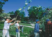 keeping campus clean