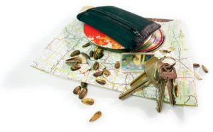 Car keys, map, CDs, and sunflower seeds