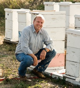 Colin Henderson and his University of Montana colleagues have turned pests into partners, training bees to locate buried land mines.