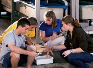 Students look at sea life