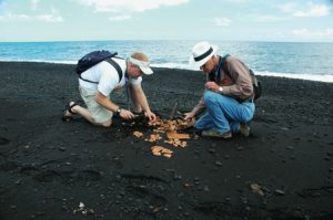 Jonathan Major and Norbert M. Larsen (MA '60) break bricks apart on Stromboli's shore. The terra-cotta pieces will be spilled into the ocean and videotaped to illustrate longshore drift; the film will be shown in future BYU classrooms.