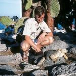 Jacks sites with an iguana