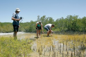 Students gathering water and sediment samples in the Florida Keys.