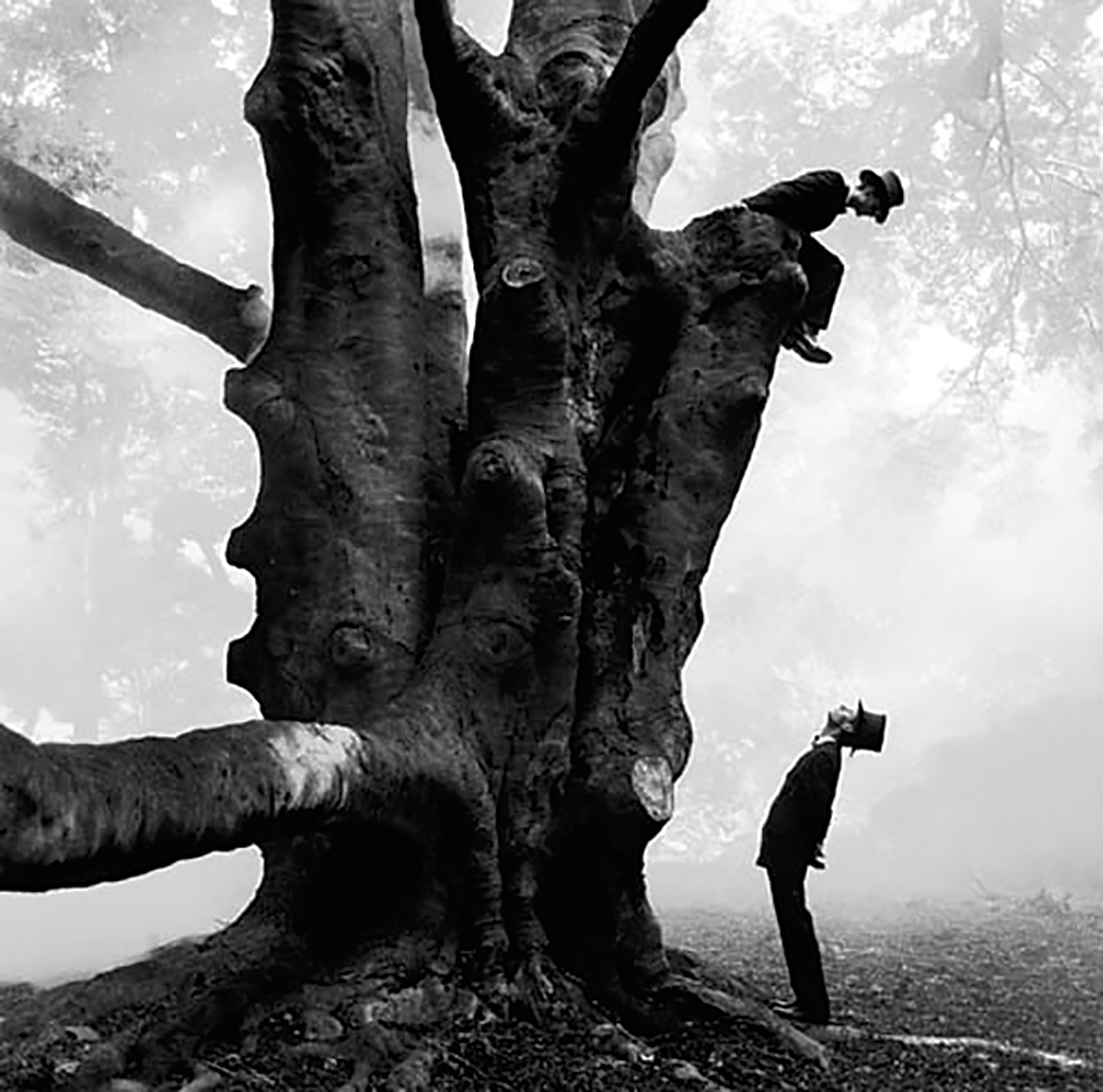 A photograph of a man bending over backwards to look up at a similarly dressed man who is sitting and looking down at him from a very oddly formed tree.