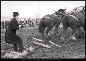 Dressed in 19th-century costume, President Dallin H. Oaks (BS '54) rides a scraper behind a team of Clydesdales, helping break ground for the Centennial Carillon Tower on Feb. 13, 1975.
