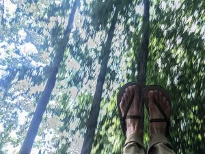 Feet of someone swinging amid trees.