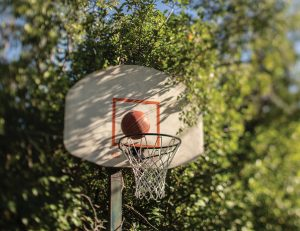 A basketball hovers just above a backboard in a wooded area.