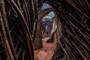 A winding sculpture maze made of willow saplings woven together meanders around a BYU Museum of Art exhibit.