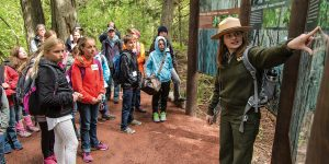 Glacier National Park ranger Teagan Tomlin teaches kids about cedar, hemlock, and black cottonwood trees along the Trail of the Cedars hike.