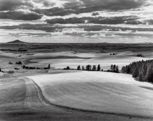 A large black and white image of the vast Palouse landscape.