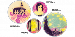"Four petri dishes containing artistic renderings of the Kirtland temple, the portrait of Emma Smith, the First Vision, and Van Gogh's ""Starry Night."" Images were painted using dark purple, bright pink, turquoise, and yellow bacteria."