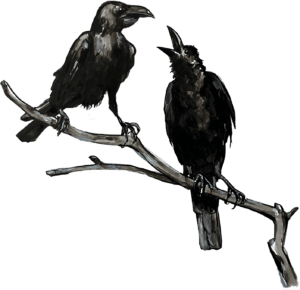 Illustration of two crows on a branch.