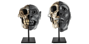 Two ancient skull replicas sit side by side on stands. The left side of their faces, each with a unique expression, is sculpted out of clay and painted dark gray.
